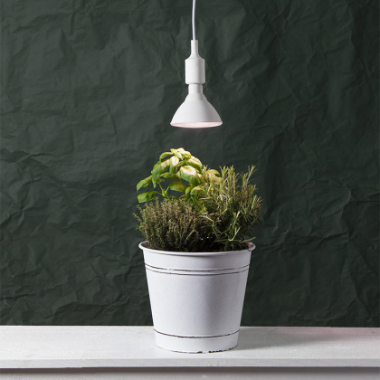 Odlingslampa