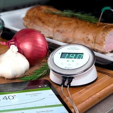 iGrill Kitchen thermometer