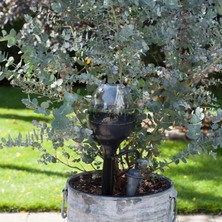 Välkända Blomvattnare för blommor och växter WM-71