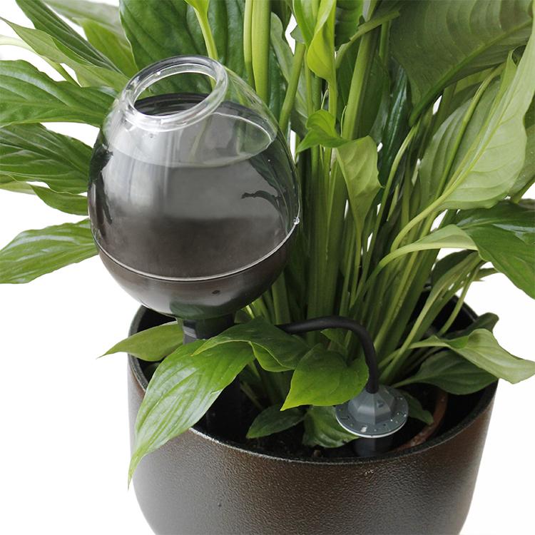 Populära Blomvattnare för blommor och växter EC-15