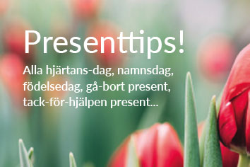 Tips på roliga presenter!